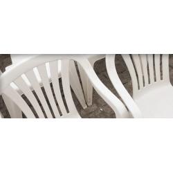 LIMPIADOR PLÁSTICOS Y PVC 500ml